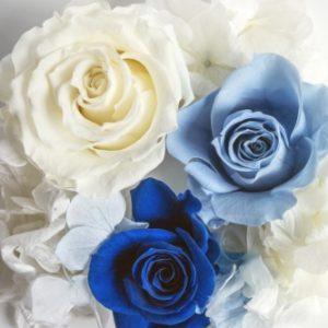白と青とブルーの薔薇